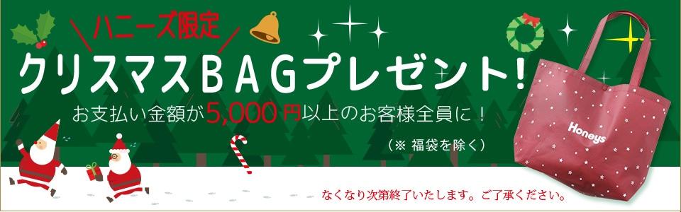 5000円以上クリスマスBAGプレゼント